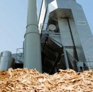 biomasse4