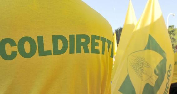 Coldiretti, scoppia la guerra del grano: blitz degli agricoltori a Roma